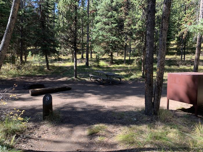 A photo of Site 9 of Loop Main Road at Lizard Creek Campground with Fire Pit, Shade, Food Storage