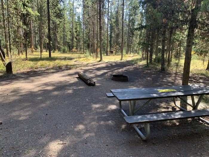 A photo of Site 9 of Loop Main Road at Lizard Creek Campground with Picnic Table, Fire Pit, Shade, Food Storage
