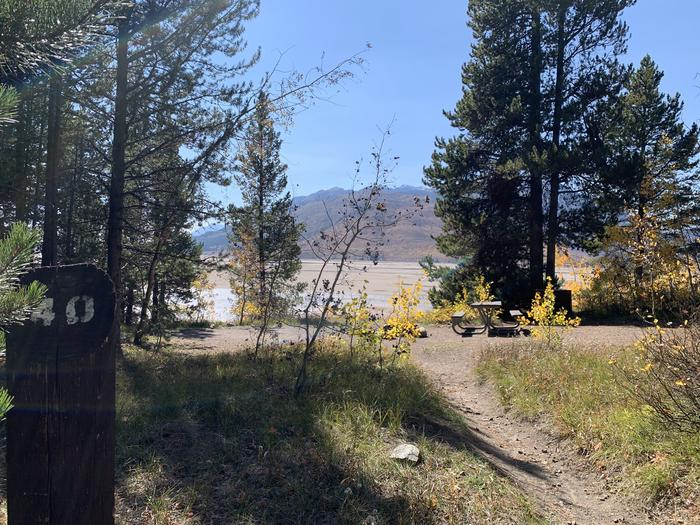 A photo of Site 40 of Loop Loop 2 at Lizard Creek Campground with Picnic Table, Fire Pit, Shade, Food Storage