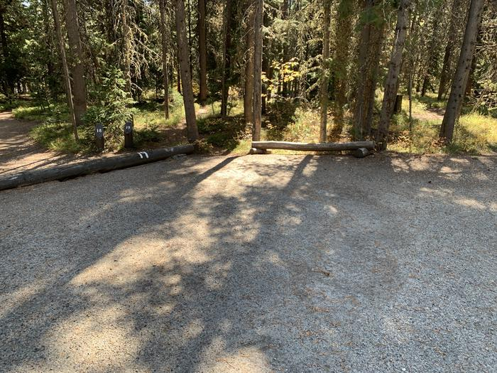 A photo of Site 19 of Loop Main Road at Lizard Creek Campground with Picnic Table, Fire Pit, Shade, Food Storage