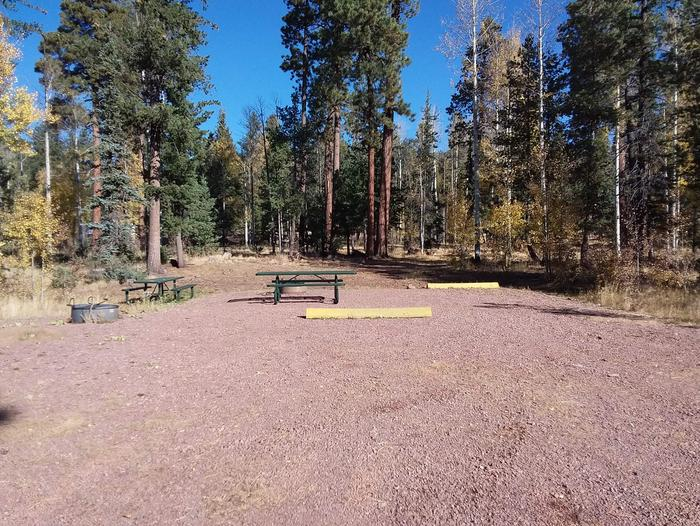Site 6 & 7 with parking, picnic tables, and campfire rings.