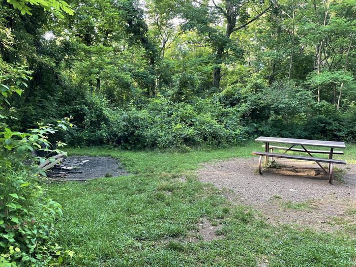 A photo of Site A072 of Loop A Loop at Loft Mountain Campground with Picnic Table, Fire Pit