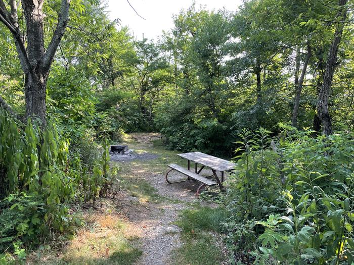 A photo of Site G194 of Loop G Loop at Loft Mountain Campground with Picnic Table, Fire Pit