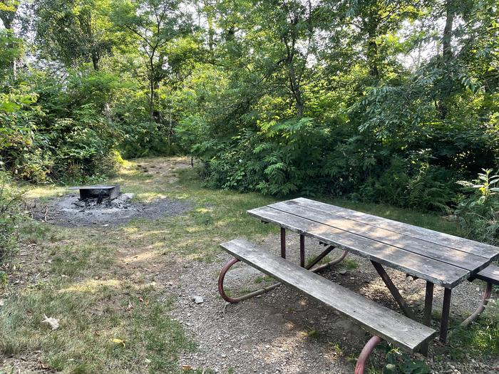 A photo of Site G194 of Loop G Loop at Loft Mountain Campground with Picnic Table, Fire Pit, Shade