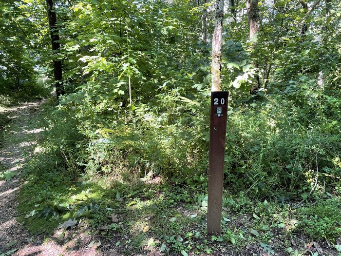 A photo of Site 020 of Loop Lower Loop at Loft Mountain Campground with No Amenities Shown