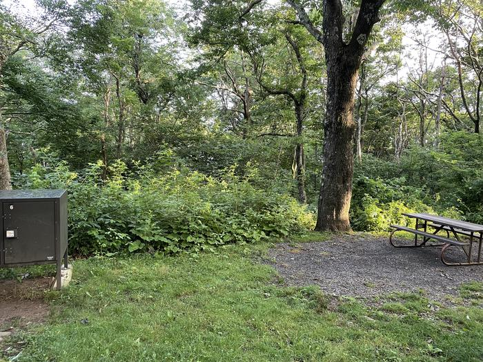 A photo of Site 006 of Loop Upper Loop at Loft Mountain Campground with Picnic Table, Food Storage