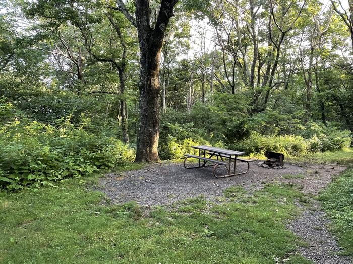 A photo of Site 006 of Loop Upper Loop at Loft Mountain Campground with Picnic Table, Fire Pit
