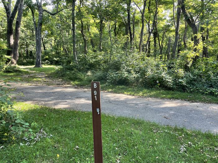 A photo of Site B091 of Loop B Loop at Loft Mountain Campground with No Amenities Shown