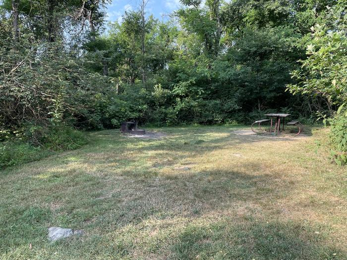 A photo of Site G204 of Loop G Loop at Loft Mountain Campground with Picnic Table, Fire Pit