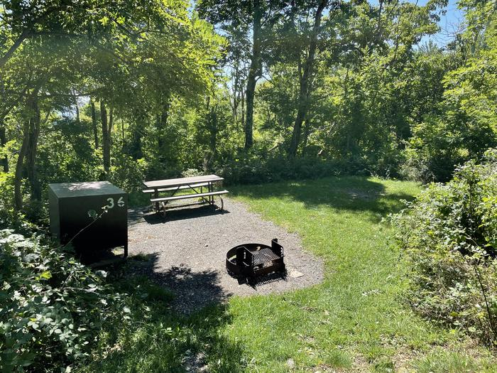 A photo of Site 036 of Loop Lower Loop at Loft Mountain Campground with Picnic Table, Fire Pit, Food Storage