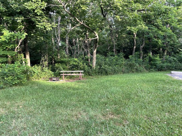 A photo of Site D111 of Loop D Loop at Loft Mountain Campground with Picnic Table, Fire Pit