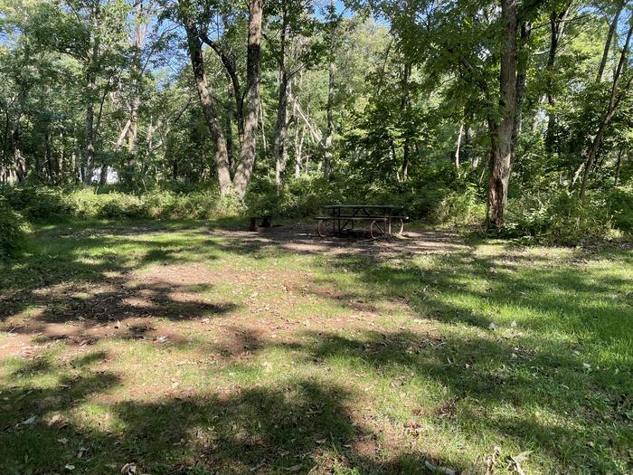 A photo of Site A063 of Loop A Loop at Loft Mountain Campground with Picnic Table, Fire Pit
