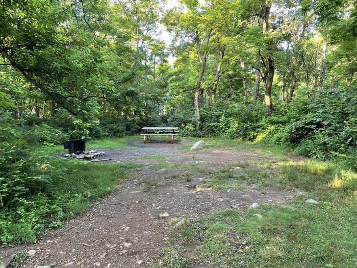 A photo of Site E147 of Loop E Loop at Loft Mountain Campground with Picnic Table, Fire Pit