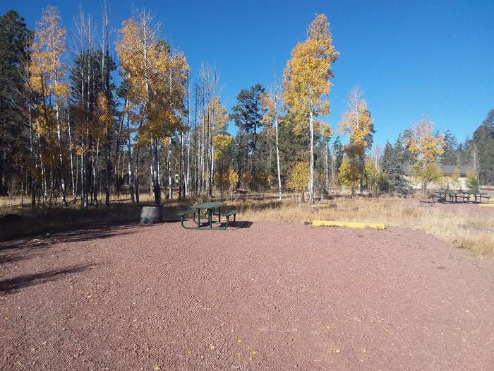 Site 16 with a picnic table, campfire ring, and parking.