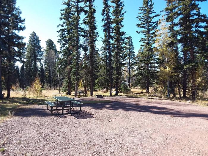 Site 21 & 22 with picnic tables, campfire rings, and parking.