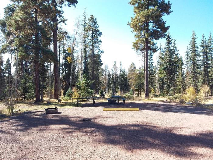 Site 24 & 25 with fire rings, parking spots, and picnic tables.