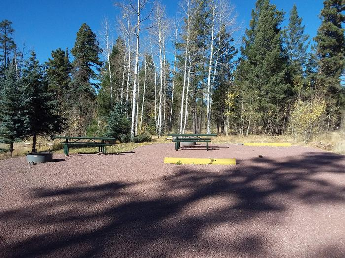 Site 26 & 27 with picnic tables, fire rings, and parking spaces.