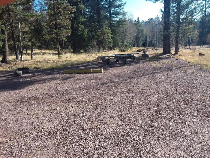 Site 34 & 35 with parking spaces, picnic tables, and fire rings.