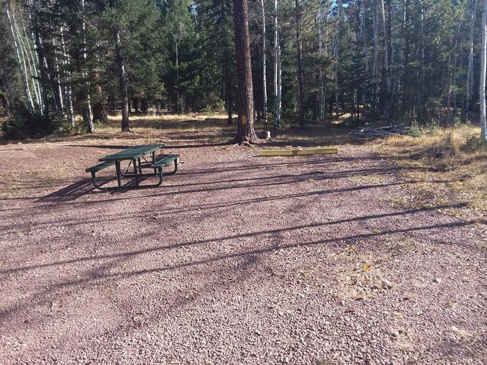 Site 36 with a picnic table, campfire ring, and parking spot.