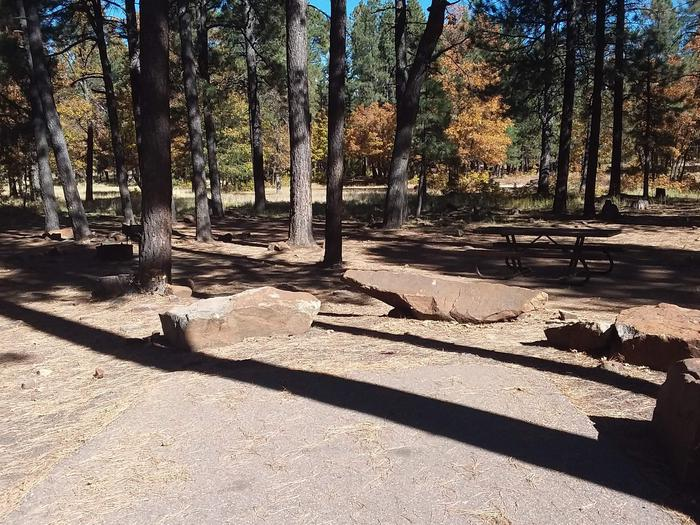 Site 15 parking area with large rocks, behind are a table and campfire ring obscured by tree shade.This Site 15 area has A campfire ring, and table.