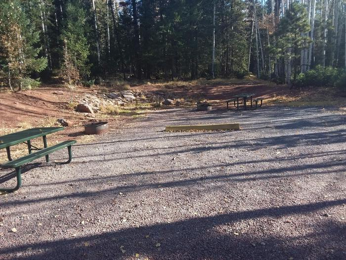 Site 44 & 45 with picnic tables, parking spots, and campfire rings.