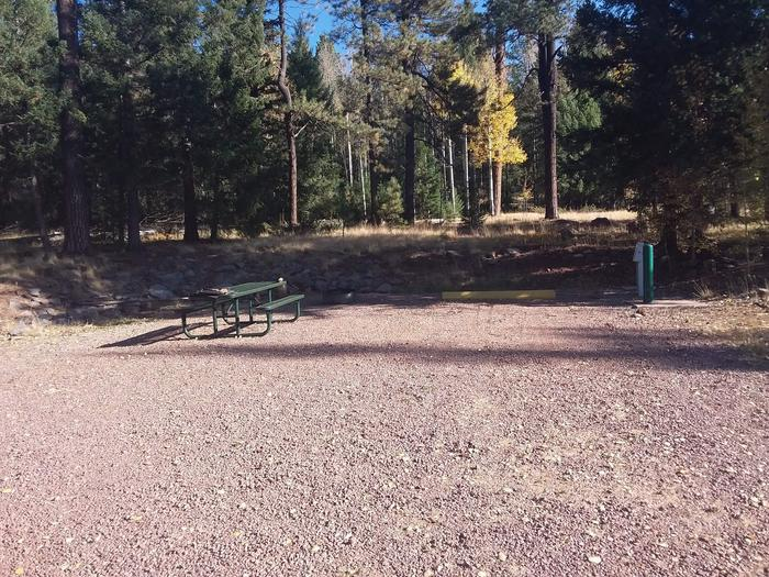 Site 63 with a picnic table, fire ring, water and electric hookups, and parking.