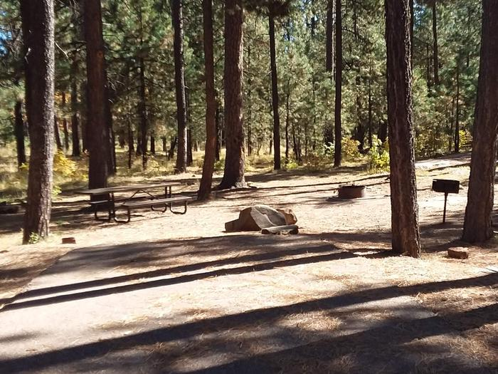 Site 22 parking and trees with table, campfire, and grill.Campsite 22 has a an included grill, campfire ring, and picnic table.