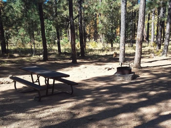 Site 23 with picnic table, and campfire with grillCampsite 23 has a table next to a campfire ring with a grill attachment.