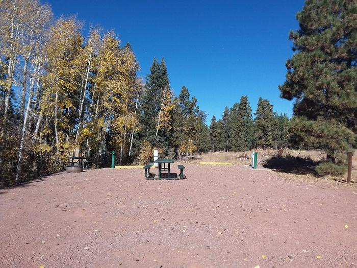 Site 70 & 71 with water and electric hookups, picnic tables, fire rings, and parking spaces.