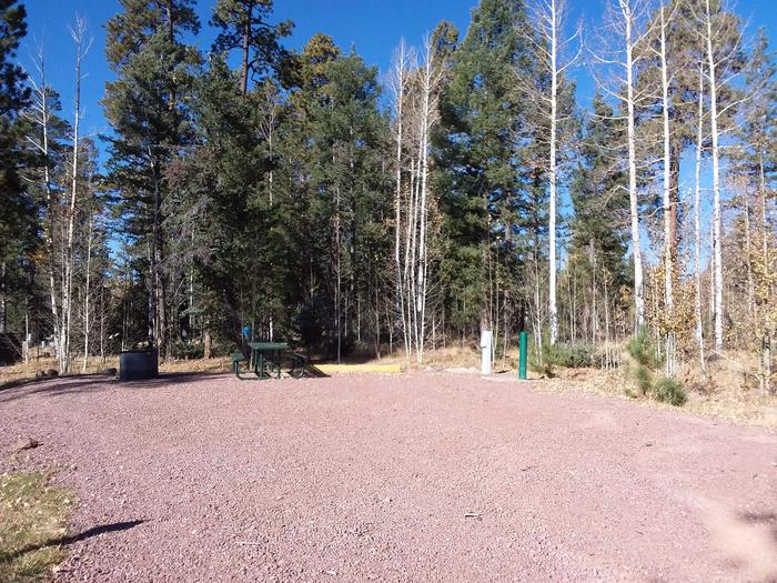 Site 85 with a fire ring, a table, hookups for water and electricity, and a parking space.