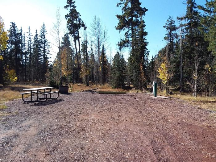 Site 86 with a picnic table, a campfire ring, available parking, and hookups for water and electricity.