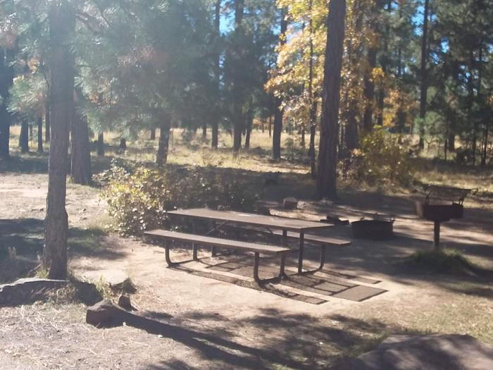 Site 32 with trees on either side of the table, grill, and campfire ring.Campsite 32 has a table, grill and Campfire ring.