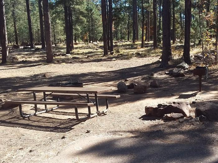 Site 37 with a grill, campfire, and table area within a rocky tree clearing. Campsite 37 has a grill campfire ring and a picnic table.