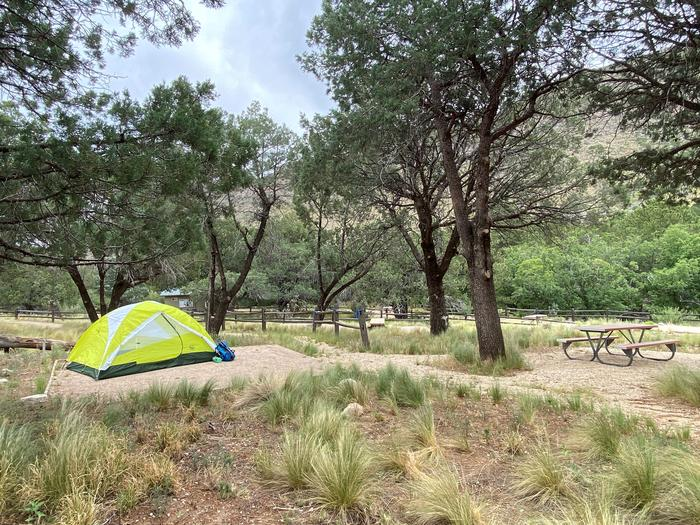 Tent campsite #9, this site offers mature pine trees for shade a tent pad and picnic table.  The site it split in two by a pathway.Tent campsite #9, with a 2-person tent displayed on the then pad.