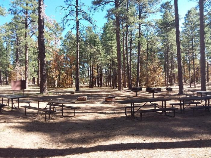 Group picnic table featuring picnic tables, campfire rings, and standing camp grills.