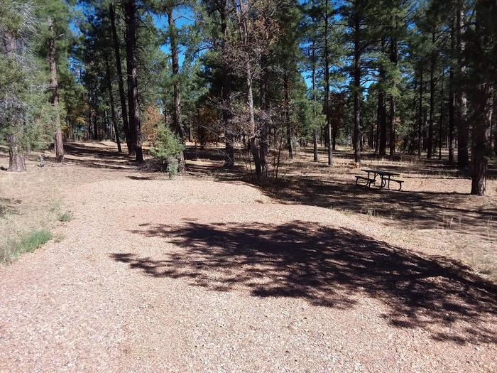 Site 2 featuring a picnic table and parking area.