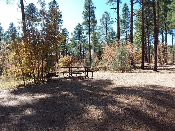 Site 4 with parking, a fire ring, and picnic table.
