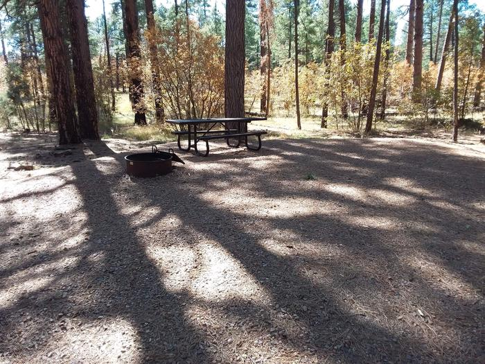 Site 6 with a picnic table, a campfire ring, and parking.