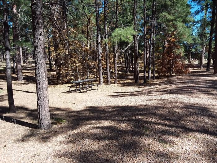 Site 8 with a picnic table.