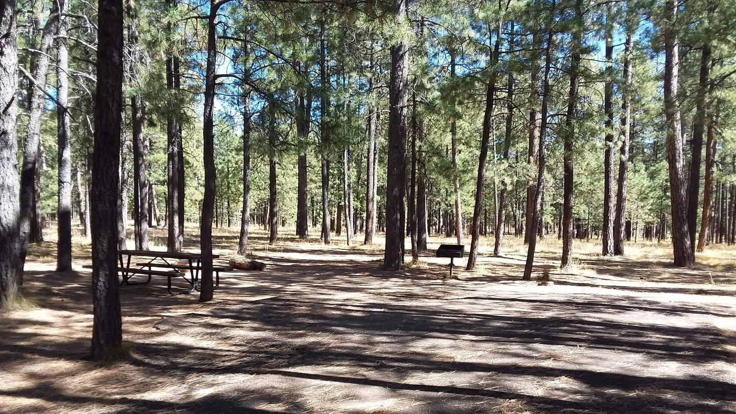 CANYON POINT Campsite