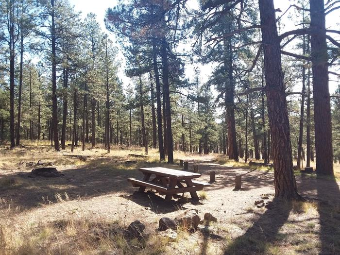 Luna Lake Site 24