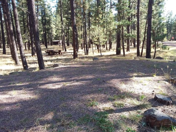 Turkey Loop Site 1 with picnic table and parking space