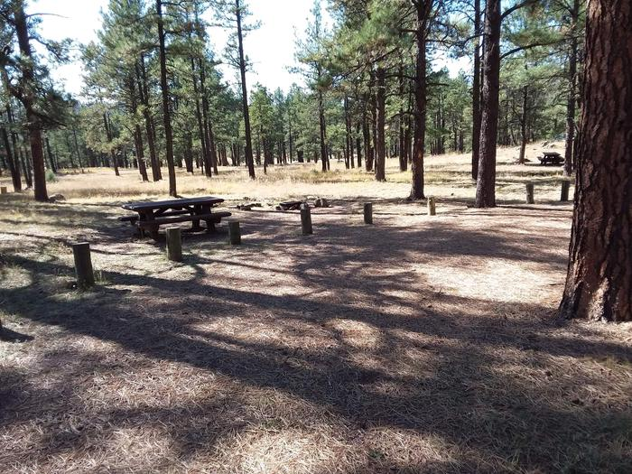 Site 3 with a picnic table and a campfire ring.