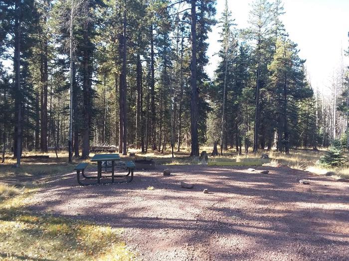 Apache Trout Campground campsite