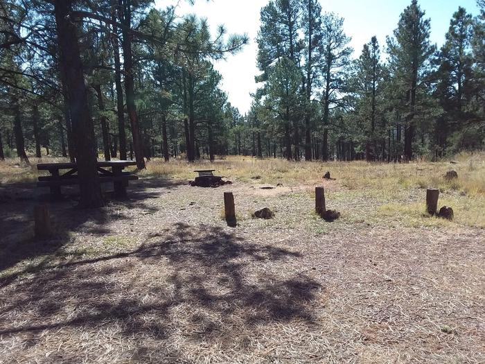 Site 5 with  a campfire ring, picnic table, and parking.