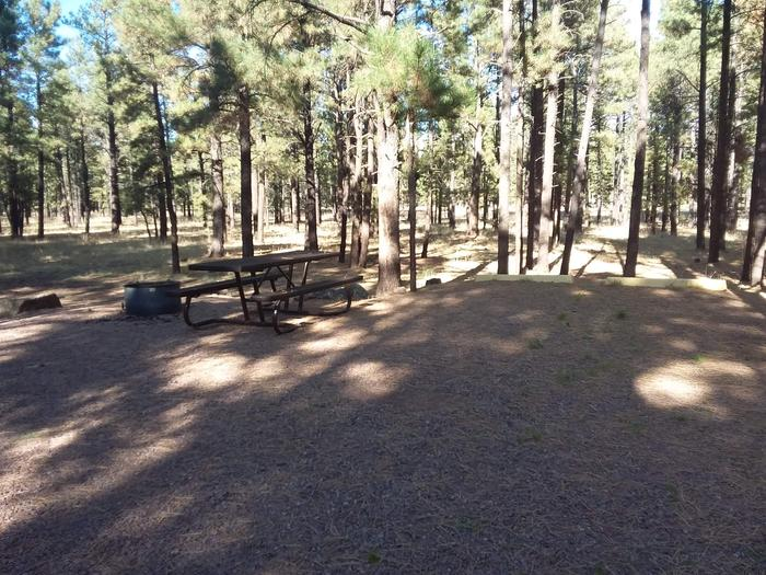 Turkey Loop Site 5 partially shaded with picnic table and fire ring