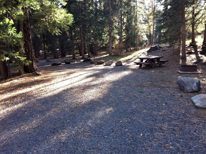View of site 14 at Grayling Campground