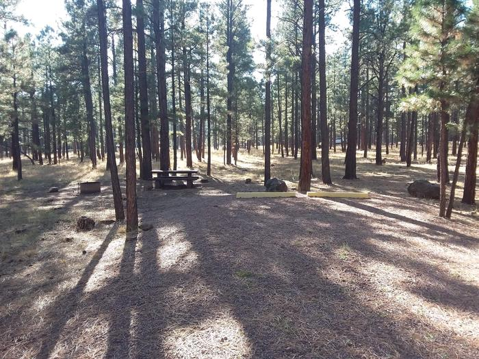 Turkey Loop Site 10 partially shaded with picnic table and fire ring