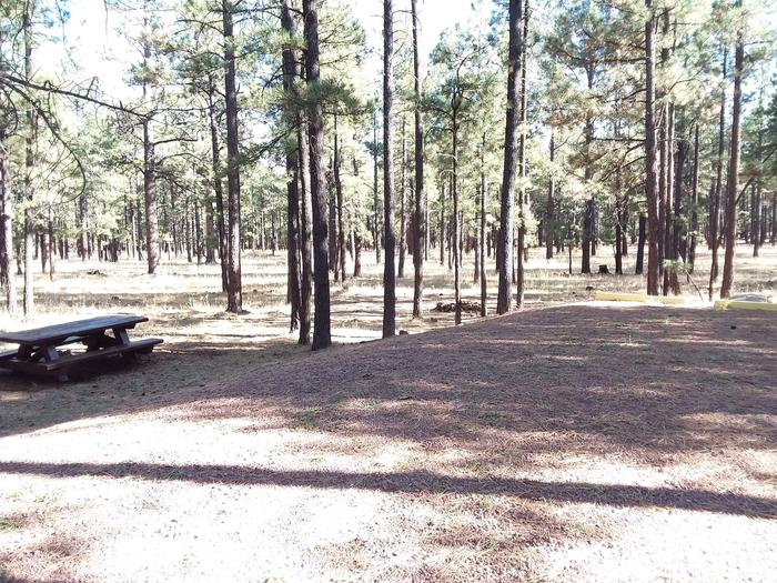 Grouse Loop Site 13 partially shaded with picnic table and fire pit