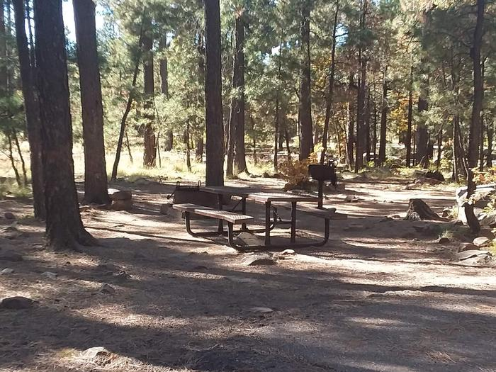 Site 62 with surrounding trees, table, grill, and campfire ring.Campsite 62 with a camp grill, fire ring, and table next to parking area.